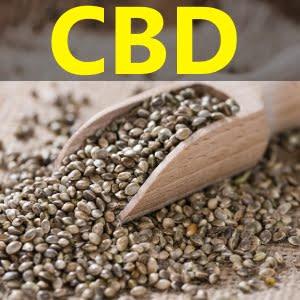 Comprar Semillas de Marihuana CBD - Grow Shop económico con precio barato - catálogo de venta al público 2021