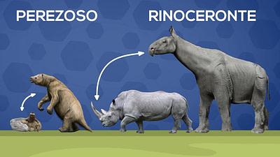 Animales que solían ser más grandes