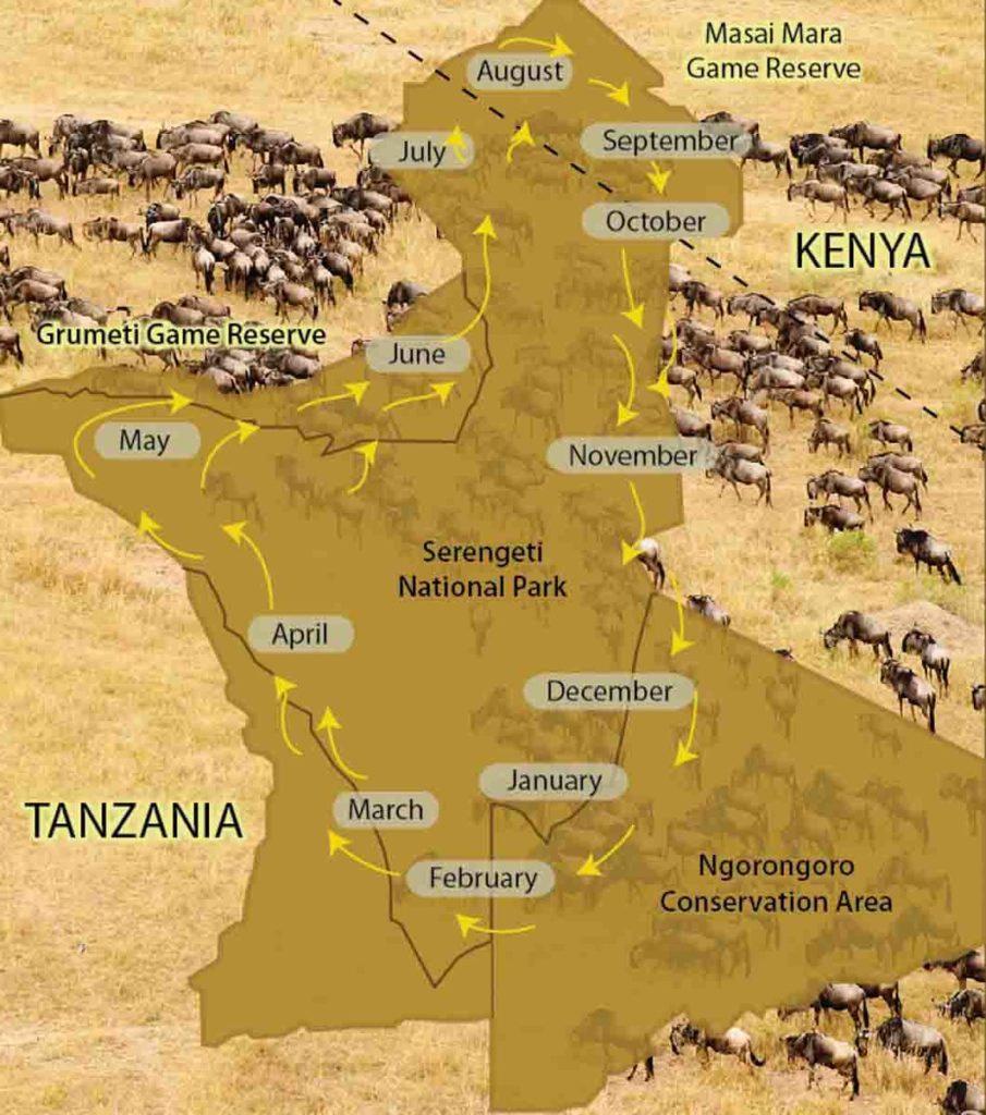 Masái Mara – Safari fotográfico en Kenia