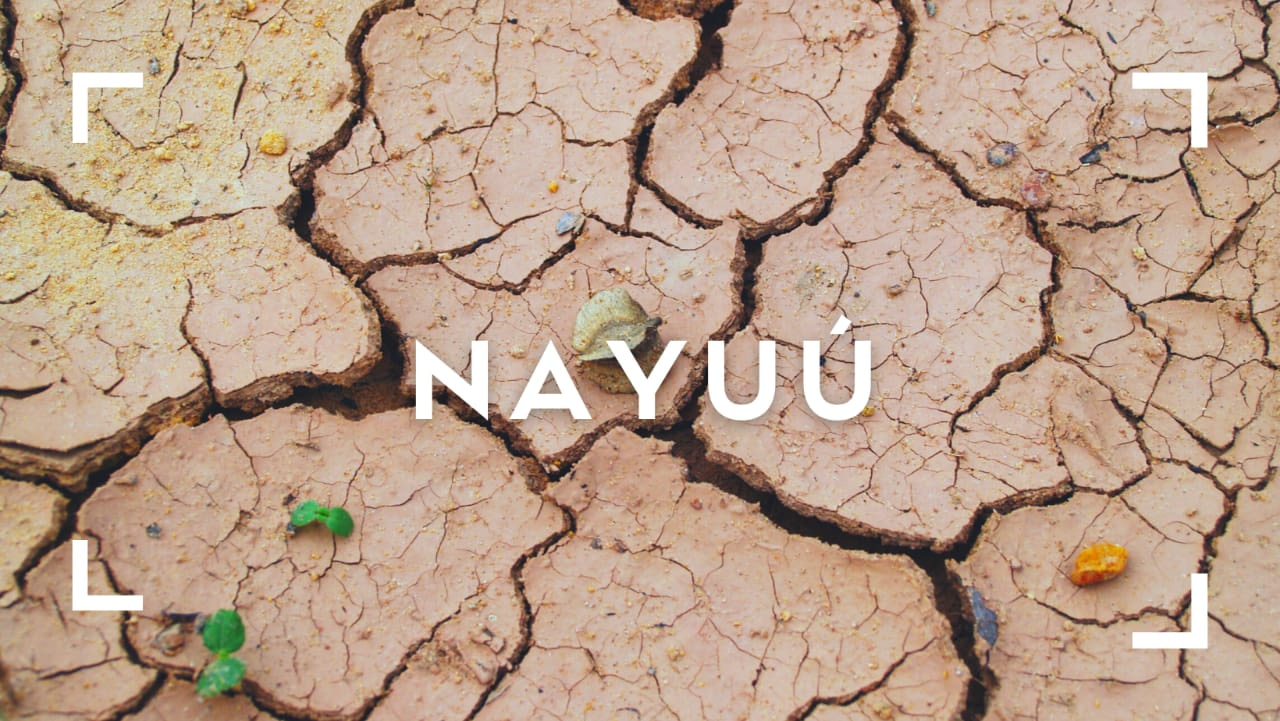 Cuento Nayuú